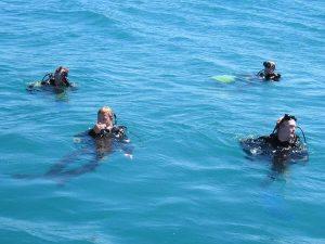 diving_40