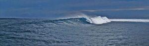 surfing_04